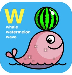 ABC whale watermelon wave vector image