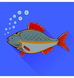 Fish With Red Fins vector