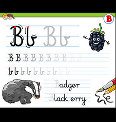 how to write letter b worksheet for kids vector image