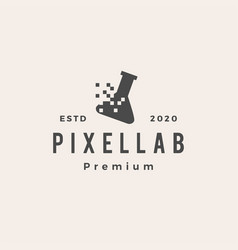 pixel lab labs digital hipster vintage logo icon vector image
