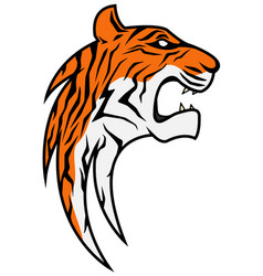 rising tiger head colored vector image