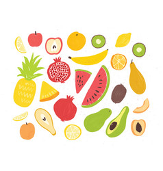 set of tasty ripe juicy exotic tropical fruits vector image