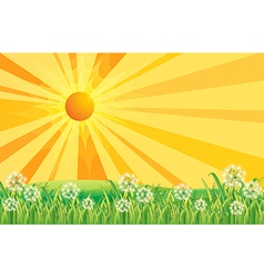 Sunshine Field vector