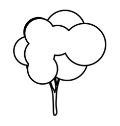 Sketch silhouette tree with rounded crown leaves vector