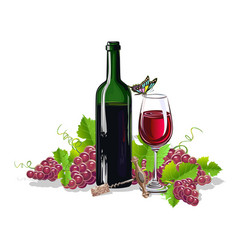 a bottle of wine with bunches of grapes vector image