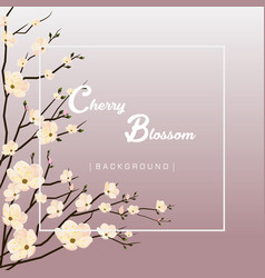 Beautiful cherry blossom background vector