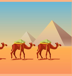 Camels in caravan in front of pyramids vector