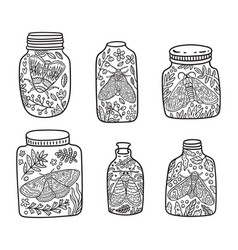 Hand drawn floral jar with moth and butterfly ink vector