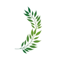 Leaf green plant leaves vector