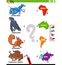 match animal species and continents educational vector image