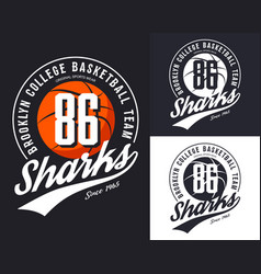 new york basketball team t-shirt print vector image