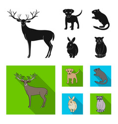Puppy rodent rabbit and other animal species vector