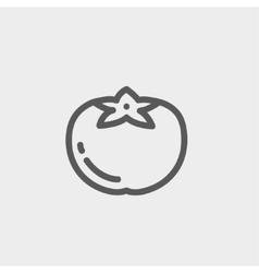 Tomato thin line icon vector