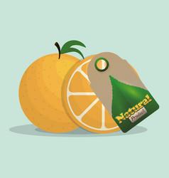 orange natural product tag market vector image