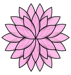Pink flower lotus on white background isolated vector image vector image