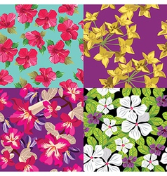 Floral set seamless patterns hand-drawing vector image