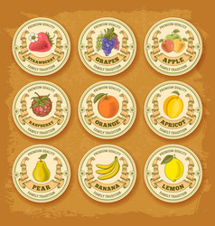 fruits and berries label set vector image