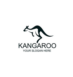 jumping kangaroo icon vector image