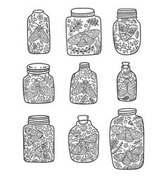 Nine hand drawn floral jar with moth and butterfly vector