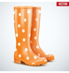 Pair of orange rain boots vector
