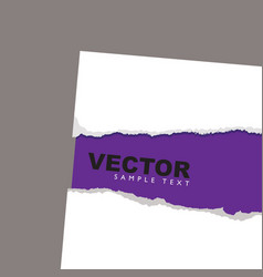 torn paper reveal purple vector image