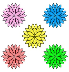 Colorful flowers isolated on white background set vector image vector image