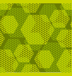concept modern geometry hexagone pattern with vector image