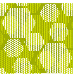 concept modern geometry hexagone pattern with vector image vector image