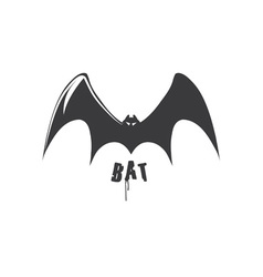 bat design template vector image