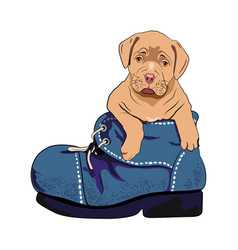 Dog in boot vector