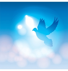 Dove Silhouette and Soft Bokeh Lights vector