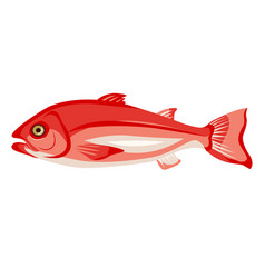 raw northern red snapper icon isolated on white vector image