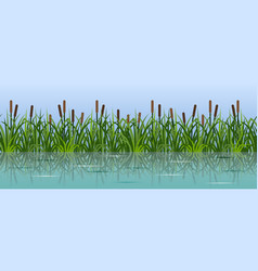 River reeds in grass pond or laje green grass vector