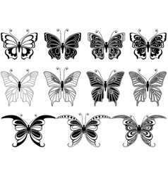 Set of eleven ornamental butterflies vector
