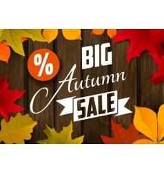 Big autumn sale Autumn leaves vector image