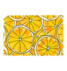 slices of orange vector image