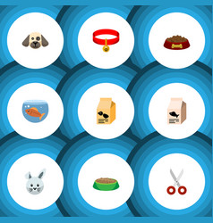 Flat icon animal set of kitty collar nutrition vector