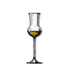 Grappa glass vector
