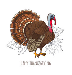 Happy thanksgiving day turkey poster text vector