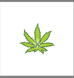Marijuana leaf logo vector