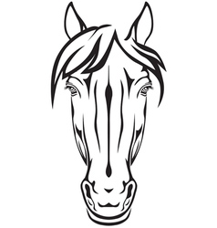 Pony face vector