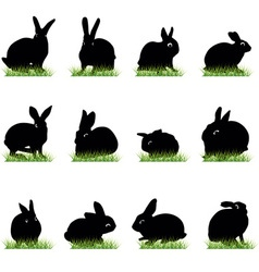 rabbits3 vector image