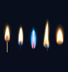 Realistic burning flames set vector