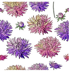 seamless pattern with asters endless texture fo vector image