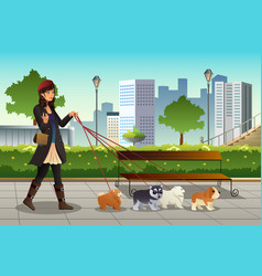 Woman walking with her dogs vector