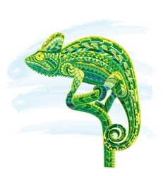Hand drawn colored doodle outline chameleon vector image vector image