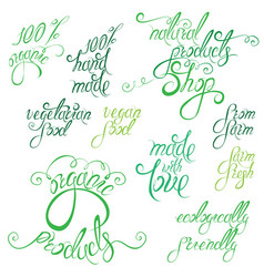 collection of delicious vegetables signs elements vector image