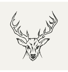 deer Black and white style vector image
