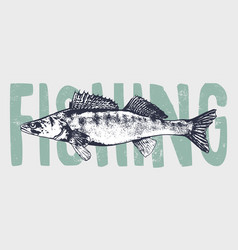 fish vintage art vector image
