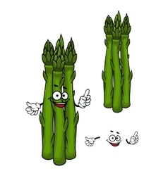 Green asparagus vegetable cartoon character vector